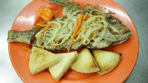 Jamaican fried snapper recipe allrecipes forumfinder Gallery