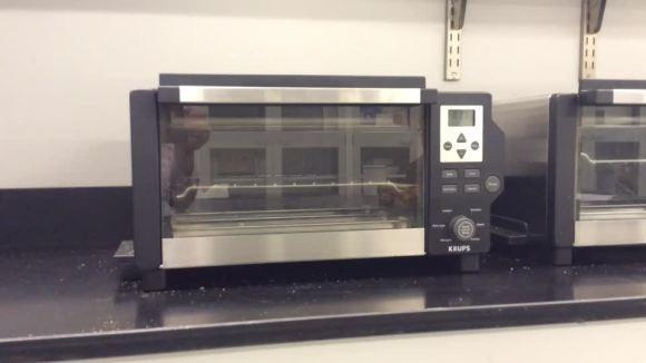 Wolf steam oven top wolf steam oven with wolf steam oven for Wolf toaster oven