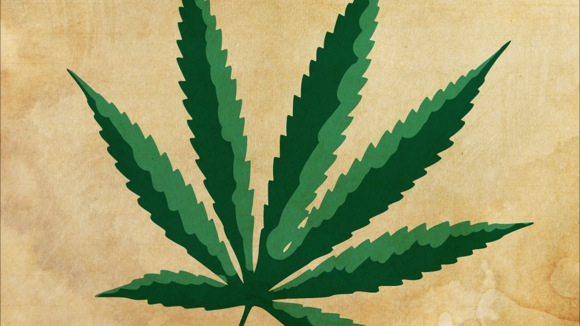 Medical Marijuana: Five Facts You Might Not Know