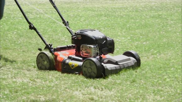 Do This for a Healthier Lawn
