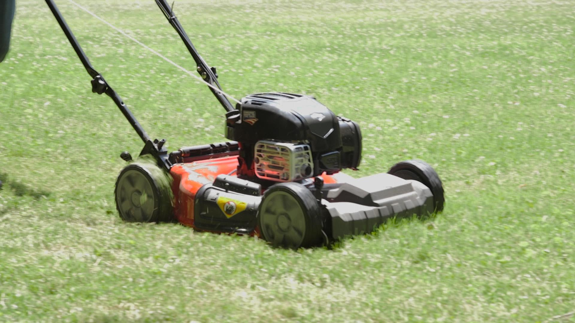 How To Cut Grass In Hot Weather And Keep It Green