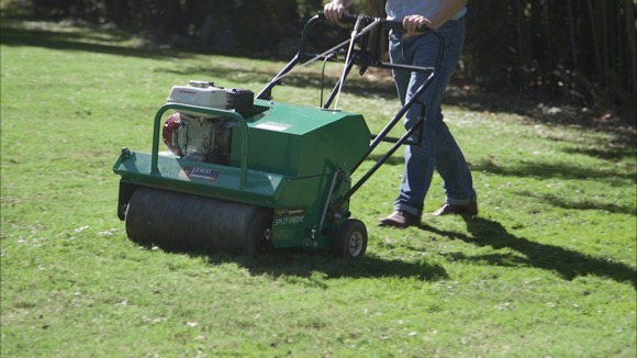 Fall Lawn Care in 3 Easy Steps