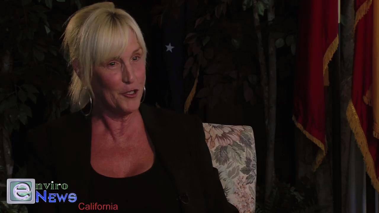 "Erin Brockovich Is Asked: ""Why no time for environmental crime?"""