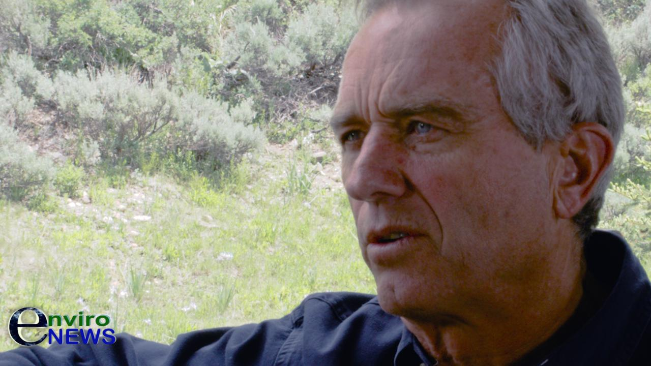 Robert F. Kennedy Jr.: 'If you believe in markets, you have to believe the era of coal has ended'