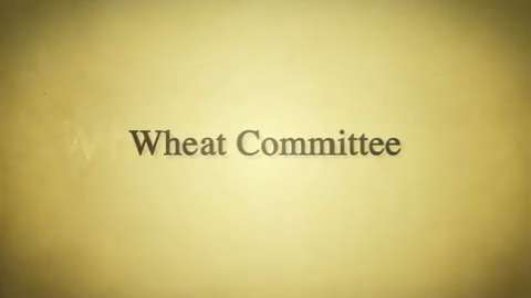 Backstory: Wheat Committee