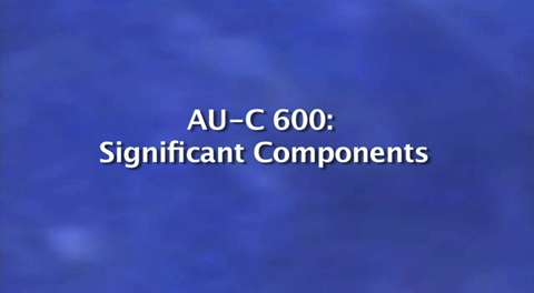 New Clarity Standards: AU-C 600: Significant Components